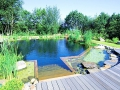 piscine-naturelle.jpg