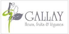 Gallay Fleurs